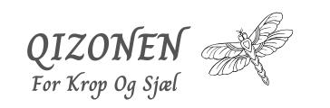 QIZONEN Logo